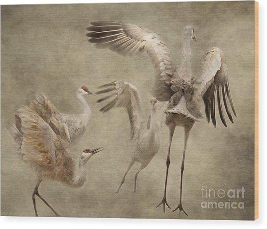 Dance Of The Sandhill Crane Wood Print