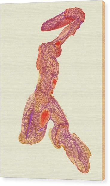 Dancer- #ss14dw016 Wood Print by Satomi Sugimoto