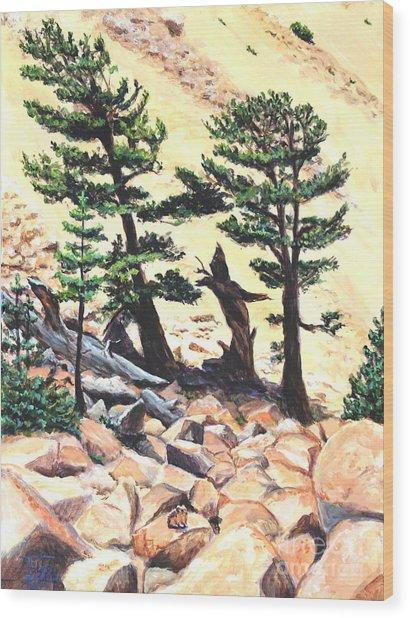 Dancing Bristlecone Wood Print