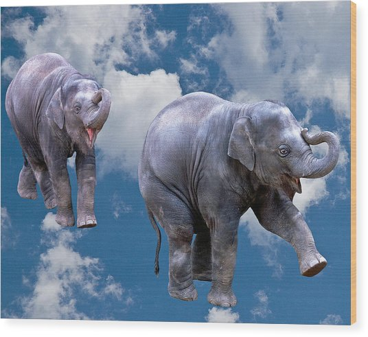 Dancing Elephants Wood Print