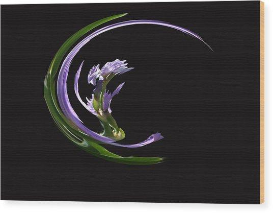 Dancing Iris 3 Wood Print
