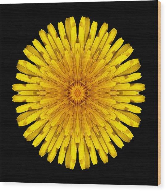 Dandelion Flower Mandala Wood Print