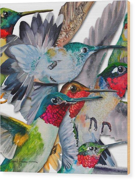 Da133 Hummingbirds By Daniel Adams Wood Print