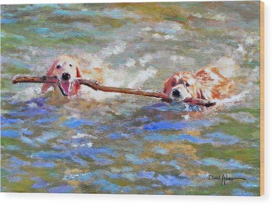 Da152 Sticking Together By Daniel Adams Wood Print