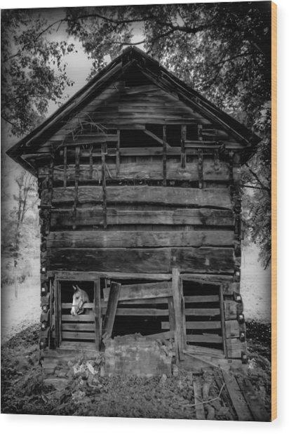 Daniel Boone Cabin Wood Print