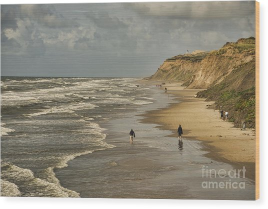 Danish Beach In North Jutland Wood Print
