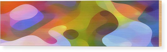 Dappled Light Panoramic 2 Wood Print