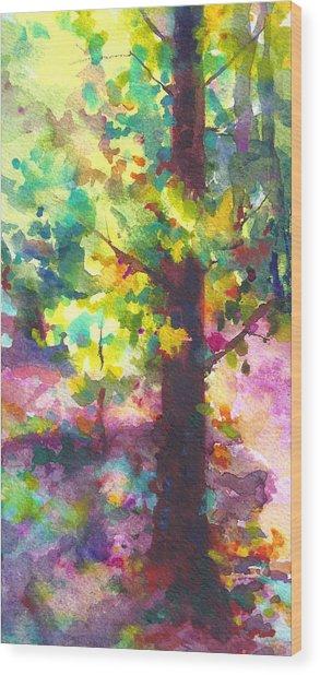 Dappled - Light Through Tree Canopy Wood Print