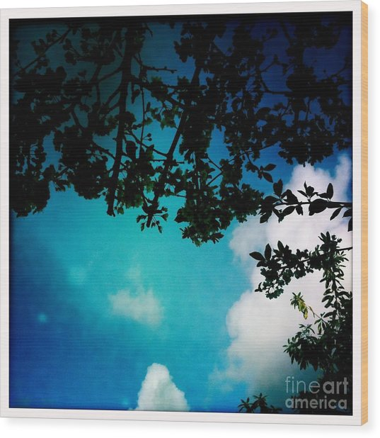 Dappled Sky Wood Print