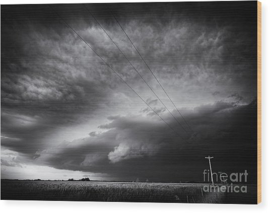 Dark Prairie Wood Print