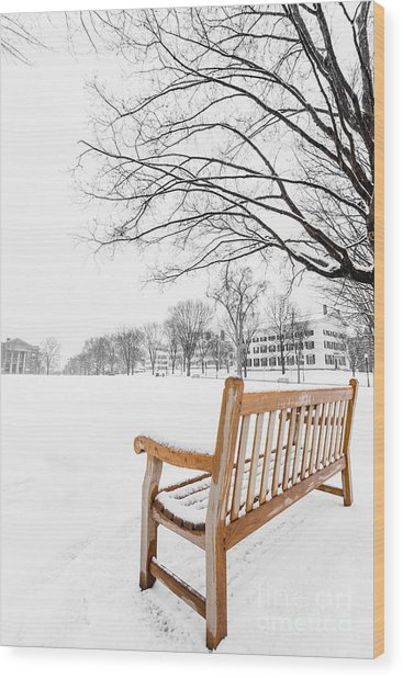 Dartmouth Winter Wonderland Wood Print