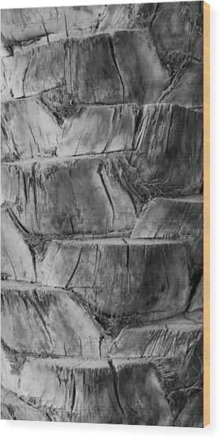 Date Palm Bark Wood Print