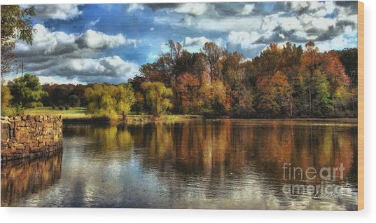 Davidson Mill Pond 2 Wood Print by Louise Reeves