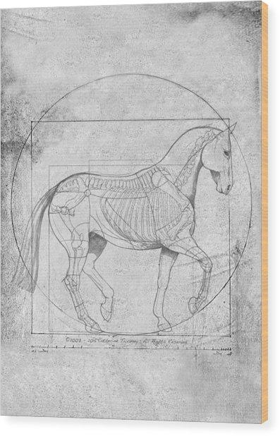Da Vinci Horse Piaffe Grayscale Wood Print