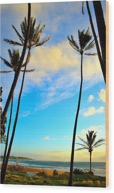 Dawn And Palms Kauia - Hawaii Wood Print