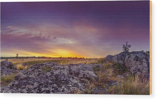Dawn At Steppe Wood Print