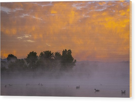 Dawn At The Sepulveda Dam Wildlife Reserve Wood Print