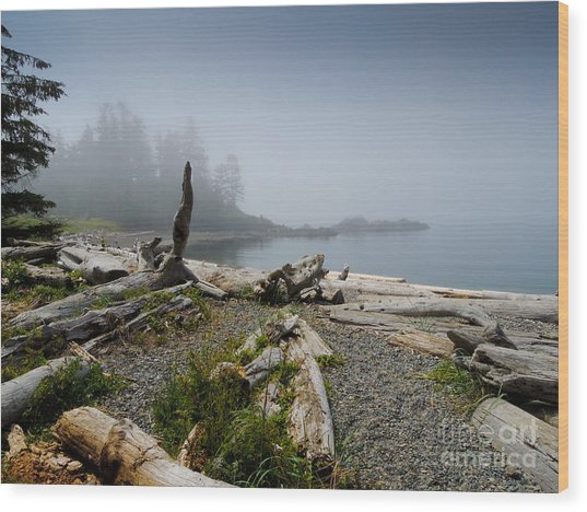 Dawn Cove Wood Print