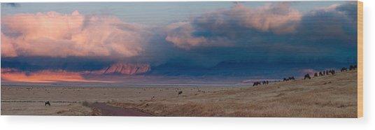 Dawn In Ngorongoro Crater Wood Print