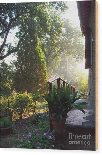 Dawn In Podere Maria-cristina Wood Print