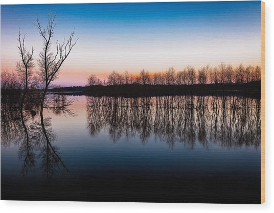 Dawn In The Flood Wood Print