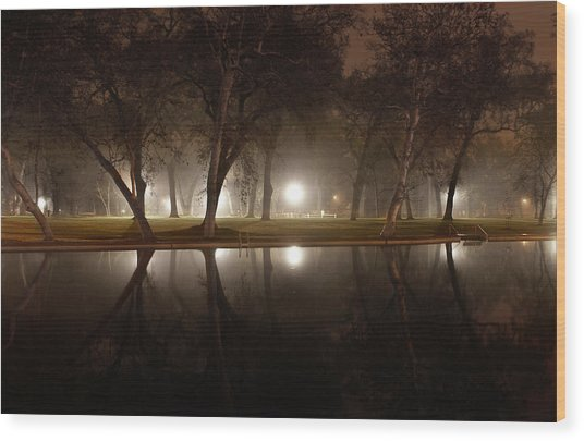 Dawn Mist Rising At Sycamore Pool  Wood Print