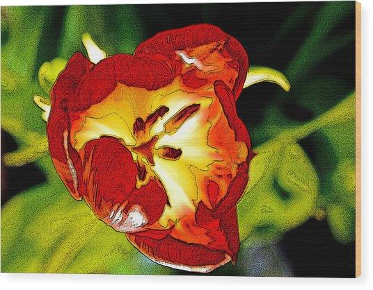 Dawn Of A Tulip Wood Print