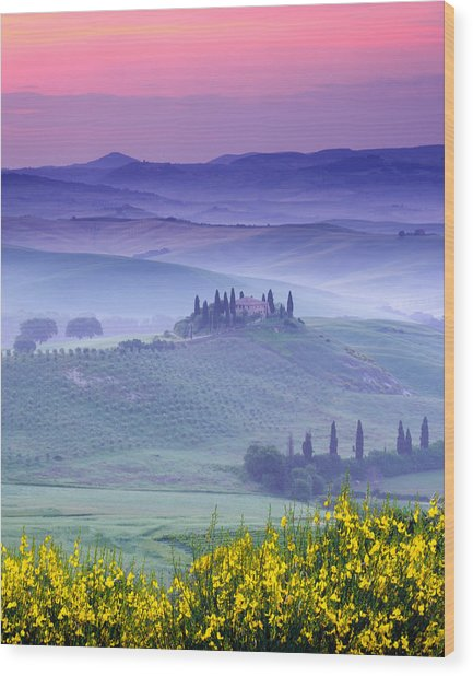 Dawn Over Belvedere Wood Print