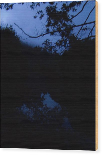 Dawns Early Light Wood Print
