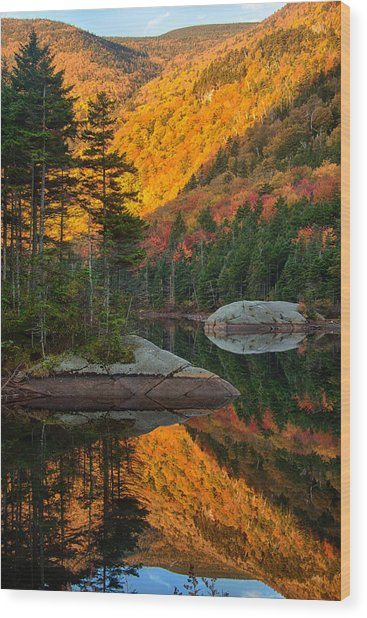 Dawns Foliage Reflection Wood Print