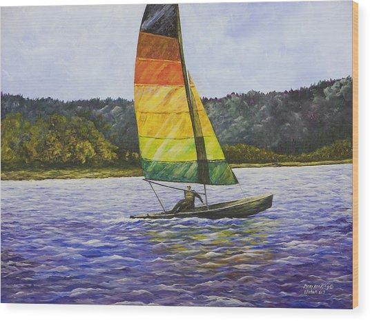Day At The Lake Wood Print