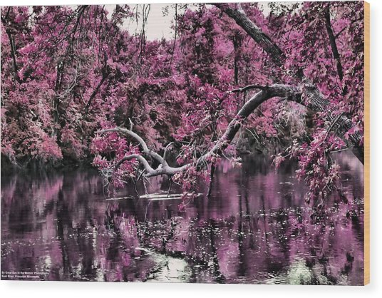 Day Dreaming Wood Print by Michelle and John Ressler