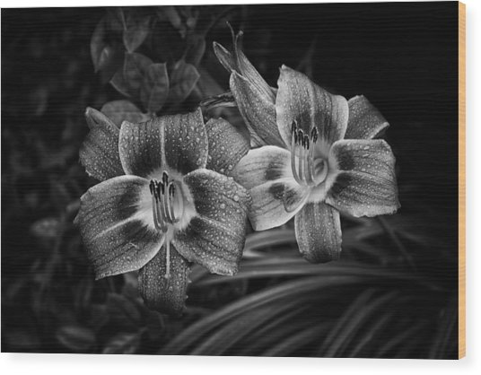 Wood Print featuring the photograph Day Lilies Number 4 by Ben Shields