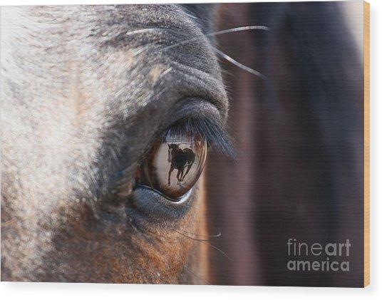 Daydream Of A Horse Wood Print