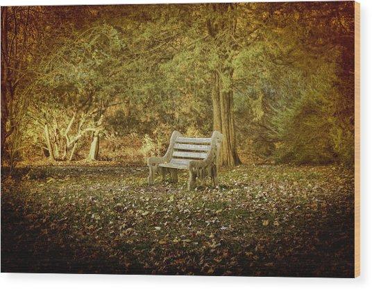 Daydreamer's Bench Wood Print