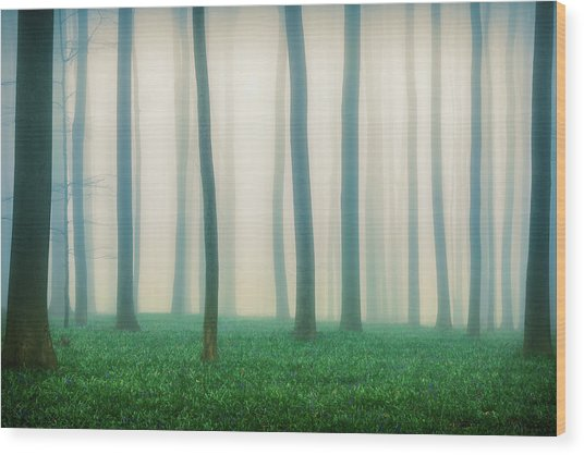 Daydreaming Of Bluebells Wood Print