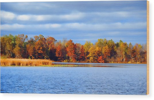 Dayton Lake Wood Print