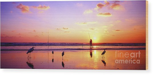 Daytona Beach Fl Surf Fishing And Birds Wood Print