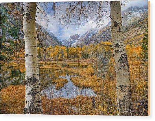 Dazzling Fall Foliage Wood Print