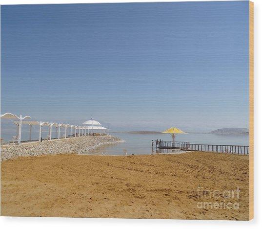 Dead Sea 1 Wood Print
