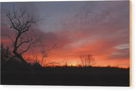 Dead Tree Sunrise Wood Print