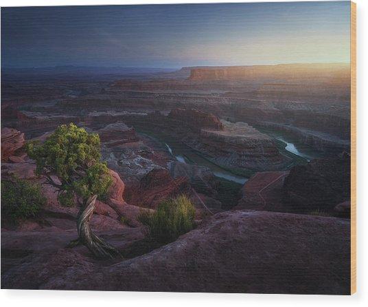 Deadhorse Land Wood Print