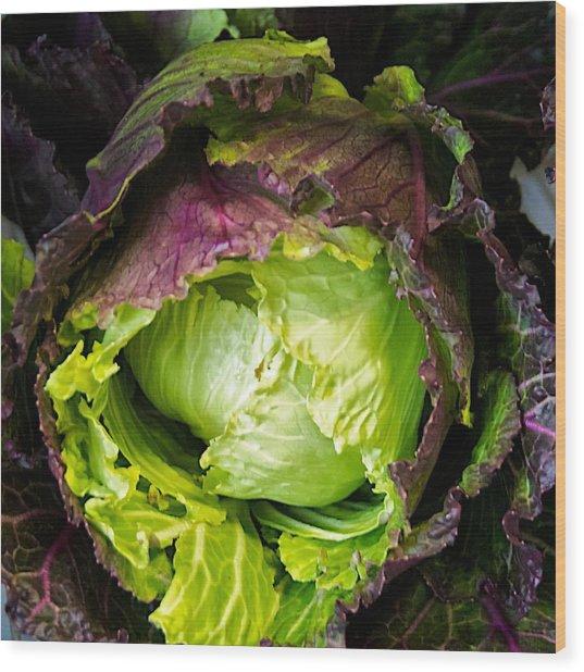Deadon Cabbage Wood Print by Tom Giske