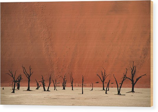 Deadvlei Wood Print by Hans-wolfgang Hawerkamp