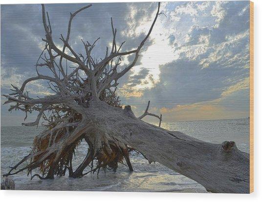 Deadwood Wood Print by Bob Jackson
