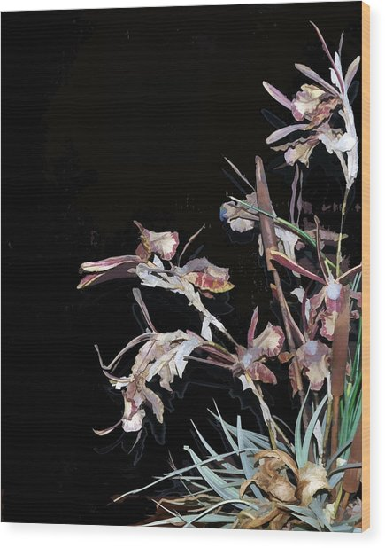 Death Of An Orchid  Wood Print