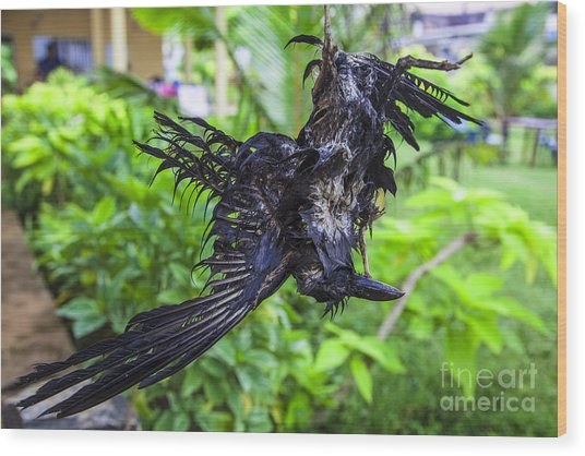 Death Raven Hanging In The Rope Wood Print by Gina Koch