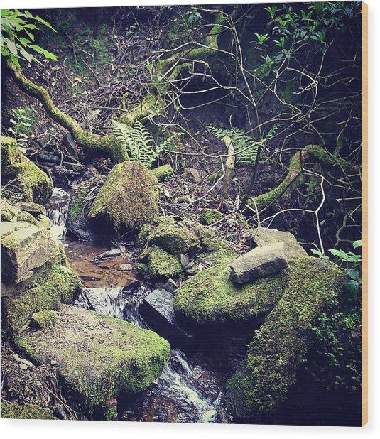 Debris Wood Print by Phil Nolan