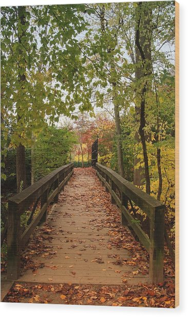 Decorate With Leaves - Holmdel Park Wood Print