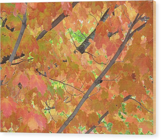 Deep Autumn Wcae  Wood Print by Lyle Crump